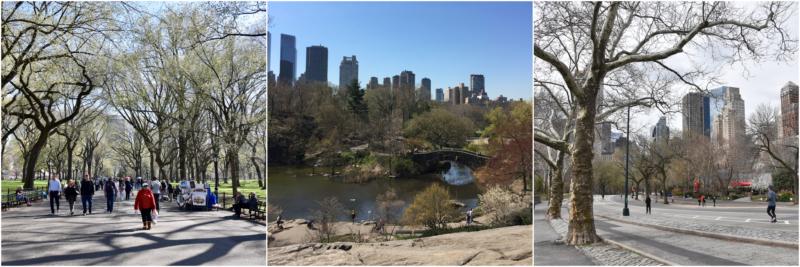 New York Reis tips Central Park www.jaimyskitchen.nl