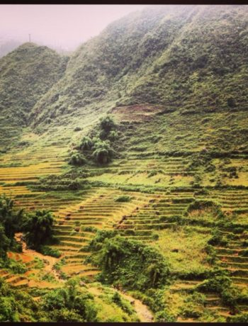Vietnam e-visum www.jaimyskitchen.nl